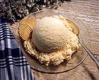 A dish of french vanilla ice cream with cooki