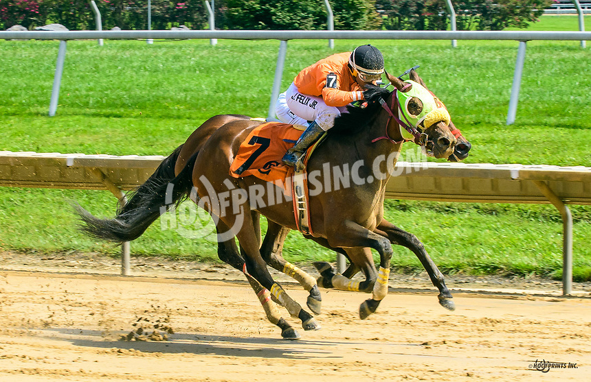Postino's Champion winning at Delaware Park on 8/30/17