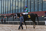 HOT SPRINGS, AR - January 16: Channing Hill, aboard winning mount Uncontested #6, prepares to enter the winners circle after the Smarty Jones Stakes at Oaklawn Park on January 16, 2017 in Hot Springs, AR. (Photo by Ciara Bowen/Eclipse Sportswire/Getty Images)