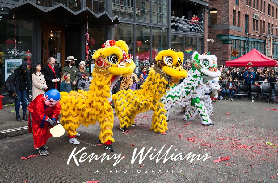 Lion Dance, Chinese New Year 2019, Wing Luke Museum, Chinatown, Seattle, WA, USA.