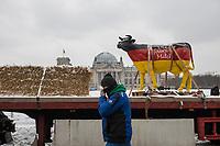 """Mehrere hundert Bauern, hautsaechlich aus Niedersachsen und Schleswig-Holstein, demonstrierten seit dem 26. Januar 2021 in Berlin mit ihren Traktoren gegen die Agrar-Politik der Bundesregierung. Sie fordern 80 Prozent deutsche Landwirtschaftsprodukte in den Lebensmittelgeschaeften und dass dort nur auslaendische Lebensmittel zugelassen werden, welche nach deutschen Produktionsstandards erzeugt wurden.<br /> An einigen der Traktoren war das Symbol der norddeutschen sog. """"Landvolkbewegung"""" (schwarze Fahne mit einem stilisierten Pflug und einem roten Schwert) von 1929 angebracht. Mitglieder der national-voelkischen und antisemitischen """"Landvolkbewegung"""" veruebten Anschlaege auf anders gesinnte Bauern, auf Landrats- und Finanzaemter sowie Privathaeuser von Regierungsbeamten. Seit dem Ende des Nationalsozialismus 1945 nutzen Alt- und Neonazis den Namen und das Symbol.<br /> Aufgerufen zu der Demonstration hatte die Organisation """"Land schafft Verbindung"""".<br /> Im Bild: Eine Milchkuh in den Farben schwarz-rot-gold auf einem Anhaenger vor dem Reichstagsgebaeude.<br /> 26.1.2021, Berlin<br /> Copyright: Christian-Ditsch.de"""