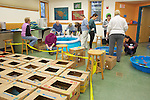 Stranding Sea Turtles In Boxes Ready For Transport, Welfleet Bay Wildlife Sanctuary, Audubon