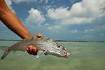 Fly fishing Casa Blanca Mexico