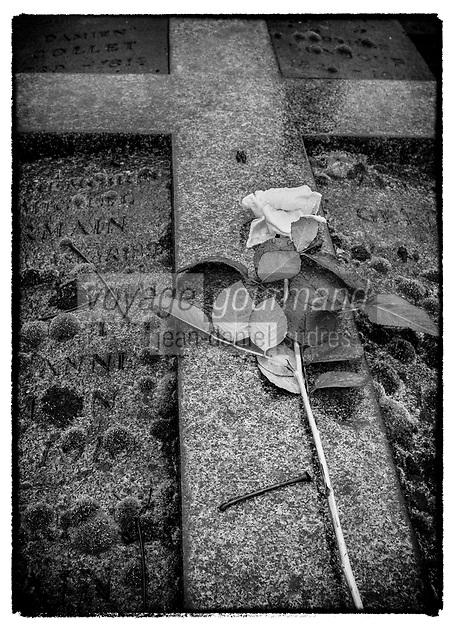 Europe/France/Ile de France/ Paris/75020: Cimetière du père Lachaise : Rose blanche sur sépulture //  Europe / France / Ile de France / Paris / 75020: Père Lachaise cemetery: White rose on grave