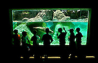 School children on a field trip watch as seal swims in a display tank at The North Carolina Zoo, located in the town of Asheboro, North Carolina. The North Carolina Zoo, located about 70 miles west of Raleigh and about 90 miles from Charlotte, is one of the largest natural habitat zoos in the United States that allows visitors to walk through its grounds. One of only two state-supported zoos in the country, the NC Zoo was the first American zoo to incorporate the natural habitat philosophy, which presents animals and plants together in exhibits that resemble the natural habits of these creatures in the wild. The North Carolina Zoological Park features animals from Africa and North America. The 1,500-acre  zoo is located atop Purgatory Mountain, which is part of the Uwharrie Mountains in central North Carolina.