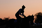 November 3, 2020: Channel Maker, trained by trainer William I. Mott, exercises in preparation for the Breeders' Cup Turf at Keeneland on Tuesday, Nov. 3, 2020, in Lexington, Kentucky. Gabriella Audi/Eclipse Sportswire/Breeder's Cup/CSM