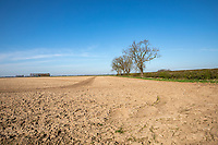 Over wintered ploughed field, no cover crop - Lincolnshire, March