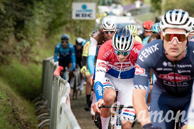 Mathieu Van der Poel (NED/Alpecin-Fenix) up the first passage of the Oude Kwaremont<br /> <br /> 104th Ronde van Vlaanderen 2020 (1.UWT)<br /> 1 day race from Antwerpen to Oudenaarde (BEL/243km) <br /> <br /> ©kramon