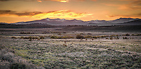 20 minutes north of Lake Tahoe, the area surrounding Truckee and Martis Valley offers a beauty all its own.