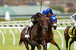 DEL MAR,CA-AUGUST 15: Vexatious ,ridden by Rafael Bejarano, wins the CTT and TOC Stakes at Del Mar Race Track on August 15,2018 in Del Mar,California (Photo by Kaz Ishida/Eclipse Sportswire/Getty Images)