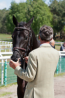 NZL-Andrew Nicholson (QUIMBO) 2012 FRA-Saumur International Horse Trial: FIRST HORSE INSPECTION - Wed 16 May - ACCEPTED - CCI***