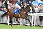 Stepper Point (no. 7), ridden by Martin Dwyer and trained by William Muir, wins the group 3 Flying Five Stakes for three year olds and upward on September 14, 2014 at the Curragh Racecourse in Newbridge, Kildare, Ireland.  (Bob Mayberger/Eclipse Sportswire)