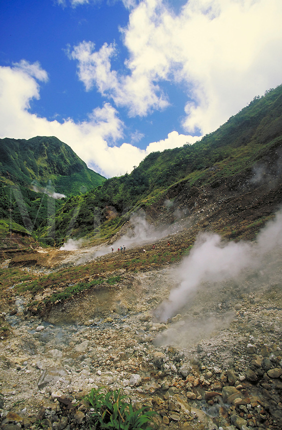 Valley of Desolation (Fumarole Area), Morne Triois Pitons National Park, island of Dominica , West Indies. Morne Triois Pitons Nat. Pk., Dominica West Indies.