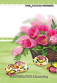 Isabella, EASTER, OSTERN, PASCUA, photos+++++,ITKE161415A-BSTRWS,#e# easter tulips