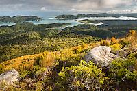 Whanganui Inlet on west coast at sunset and alpine vegetation, Nelson Region, West Coast, South Island, New Zealand