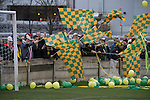 Runcorn Town 1 Runcorn Linnets 0, 26/12/2013. The Pavilions, North West Counties League Premier Division. Away supporters with flags and balloons gathering behind a goal before the Boxing Day derby match between Runcorn Town and visitors Runcorn Linnets at the Pavilions, Runcorn, in a top-of the table North West Counties League premier division match. Runcorn Linnets won 1-0 and overtook their neighbours at the top of the league in a game watched by 803 spectators. Runcorn Linnets were a successor club to Runcorn FC, one of England foremost non-League clubs of the 1970s and 1980s. Photo by Colin McPherson.