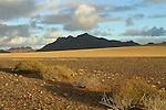 Parc national du Namib Naukluft. Lumière d'orage.Namibie