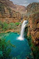 Havasu Falls<br /> Havasu Canyon<br /> Havasupai Indian Reservation<br /> Colorado Plateau,  Arizona