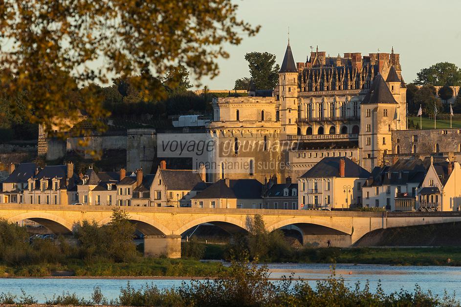 France, Indre-et-Loire (37), Amboise, Vallée de la Loire classée Patrimoine Mondial de l'UNESCO, château royal et la ville basse // France, Indre et Loire, Amboise, Loire Valley listed as World Heritage by UNESCO, Chateau d'Amboise and the lower town