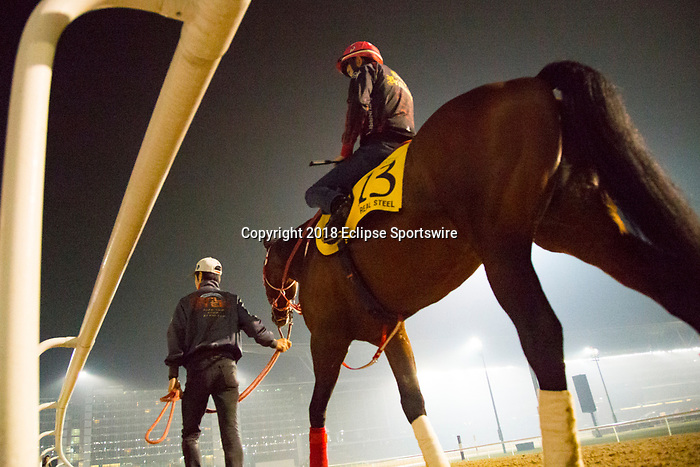 DUBAI,UNITED ARAB EMIRATES-MARCH 30: Real Steel,trained by Yoshito Yahagi,exercises in preparation for the Dubai Turf at Meydan Racecourse on March 30,2018 in Dubai,United Arab Emirates (Photo by Kaz Ishida/Eclipse Sportswire/Getty Images)
