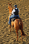Baltimore, MD- May 17: Out rider watch's as Preakness contenders exercise  during morning workouts at Pimlico Race Course in Baltimore, MD on 05/17/12. (Ryan Lasek/ Eclipse Sportswire)