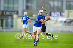 Eoin Ross of Kerry in action against Meath in the National hurling league in Austin Stack Park on Sunday