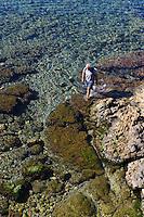 Muschelsammler in Alghero, Provinz Sassari, Nord - Sardinien, Italien