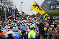 peloton up the Berendries<br /> <br /> 102nd Ronde van Vlaanderen 2018 (1.UWT)<br /> Antwerpen - Oudenaarde (BEL): 265km