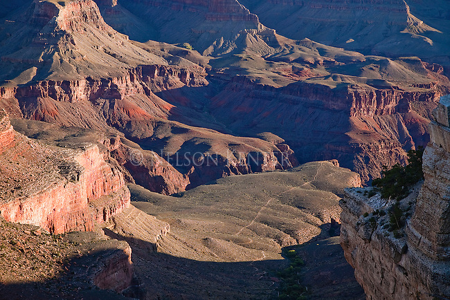 View into Grand Canyon from the south rim
