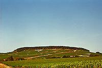 In Chablis: Montee de Tonnerre, east of Fleys, a Chablis premier cru vineyard