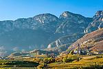Italy, Alto Adige - Trentino (South Tyrol), Cortaccia sulla strada del vino: wine village with Nonsberge mountains | Italien, Suedtirol, Kurtatsch an der Weinstrasse: Weinort vor den Nonsbergen