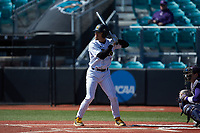 Alex Carballo (8) of the Kennesaw State Owls at bat against the Western Carolina Catamounts at Springs Brooks Stadium on February 22, 2020 in Conway, South Carolina. The Owls defeated the Catamounts 12-0.  (Brian Westerholt/Four Seam Images)