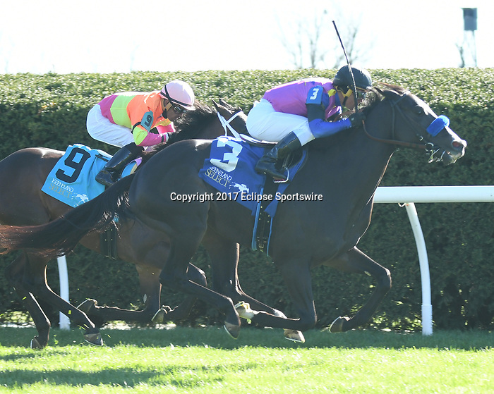 LEXINGTON, KY - APRIL 07: Big Score wins the 29th running of the Transylvania Presented by Keeneland Select (Grade 3) $150,000 for owner George Krikorian, trainer Tim Yakteen and jockey Javier Castellano.  April 07, 2017