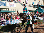 October 2, 2010.Zneyatta riden by Mike Smith in the paddock before winning The Lady's Secret Stakes at Hollywood Park, Inglewood, CA._Cynthia Lum/Eclipse Sportswire.com
