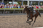 HALLANDALE BEACH, FL - March 31: #2 Coach Rocks with jockey Luis Saez on board, wins the Gulfstream Park Oaks GII at Gulfstream Park on March 31, 2018 in Hallandale Beach, Florida. (Photo by Liz Lamont/Eclipse Sportswire/Getty Images)