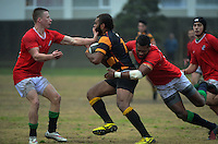 160723 Wellington Club Rugby - MSP v Wellington