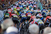 peloton up the Wijnpers<br /> <br /> Women Elite – Road Race (WC)<br /> Race from Antwerp to Leuven (157.7km)<br /> <br /> ©kramon
