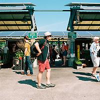 Patrons walk through the Bloomington Farmer's Market on Saturday, June 2, 2018. (Photo by James Brosher)