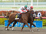 30 January 2010: This Ones for Phil and jockey John Velazquez after the Sunshine Millions Sprint Stakes at Gulfstream Park in Hallandale Beach, FL.