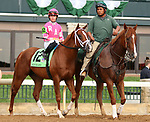 """October 07, 2018 : #12 All About It and jockey Tyler Gaffalione in the 1st running of The Indian Summer $200,000 """"Win and You're In Breeders' CupJuvenile Turf Sprint Division"""" for trainer Mark Casse and owner John Oxley  at Keeneland Race Course on October 07, 2018 in Lexington, KY.  Candice Chavez/ESW/CSM"""