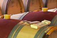 Bung hole with stopper. Oak barrel aging and fermentation cellar. Chateau Malartic Lagraviere, Pessac Leognan, Graves, Bordeaux, France