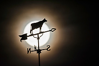 The full moon rises behind a weather vane with a cow silhouette atop a bank in Uptown Westerville.