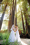 Redwood Grove Wedding