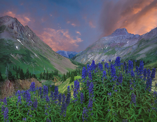 Sunrise in Yankee Boy Basin, Ouray, Colorado. John guides custom photo tours in the Sneffels Range and throughout Colorado.