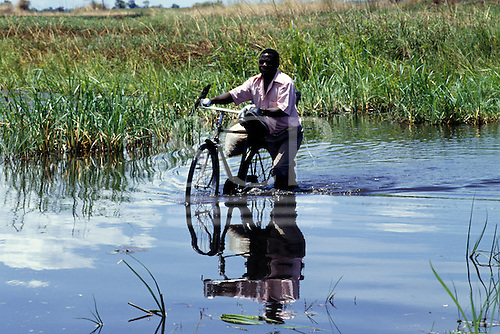 Chipundu, Zambia. Man wheeling bicycle loaded with sacks through water in the swamps.