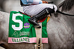 October 04, 2020:  Valiance with Luis Saez wins the Spinster Stakes at Keenland Racecourse, in Lexington, Kentucky on October 04, 2020.  Evers/Eclipse Sportswire/CSM