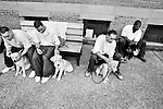 BEACON, NEW YORK:  Charlie (2nd L) and Jesse (2nd R) listen to instructions from Carl Roth during a training class for the Puppies Behind Bars (PPB) program at Fishkill Correctional Facility. The  program prepares puppies to be service dogs and consists of one day of class a week on topics such as obedience training, grooming, basic care of the dogs. The dogs spend 18-20 months in the program working with the prisoners.