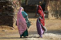 On the road from Mandava to Delhi, India