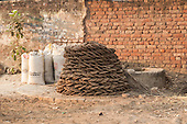 Agra, Uttar Pradesh, India. Dried dung pats for  fuel.