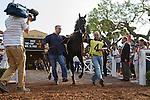 SEP 27,2014:Shared Belief,ridden by Mike Smith,wins at Santa Anita Park in Arcadia,CA. Kazushi Ishida/ESW/CSM